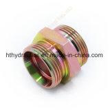 Adaptateur hydraulique de pipe du mâle 60degree de Bsp (1B)
