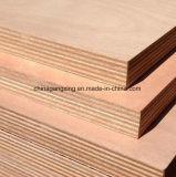 Grande madeira compensada de qualidade Birch Marine