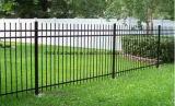 Acoplamiento de alambre del hierro/cerca galvanizados alta calidad para el jardín