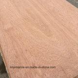 Face d'Eucalyptus de contreplaqué pour l'Europe marché Bb Grade