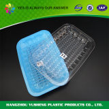 Het plastic Beschikbare Dienblad van het Bevroren Voedsel