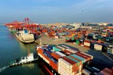 Servizio del container da Schang-Hai Cina ad Auckland