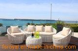 Il sofà del rattan di alta qualità imposta la nuova mobilia di vimini esterna del patio con il prezzo competitivo