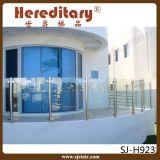 Binnen Roestvrij staal en Houten Balustrade voor BinnenTrap (sj-H827)