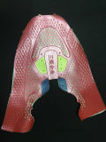 靴Vampおよびスリッパのための非縫う熱の出版物の成形機