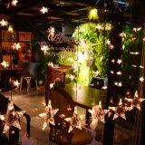 Funktions-transparenter Stern-steuern hängendes Vorhang-Licht 2017 der Cer RoHS Sicherheits-Niederspannungs-1*0.7m 60LED des Speicher-8 für Wandschrank-Kaffee Yard-Garten LED automatisch an