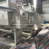 Machine d'impression de rotogravure de Shaftless pour le PVC, le BOPP, l'animal familier, etc.