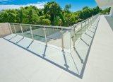 Qualitäts-Balkon-Edelstahl-Glasgeländer-Terrasse-Geländer-Entwürfe