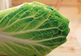 カスタム3D印刷のプラシ天の野菜のクッション