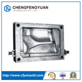 Fabrikant van China paste de Normale Plastic Vorm van de Injectie Enginering van het Afgietsel Hoge Plastic aan