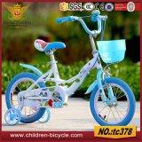 لون قرنفل زاهية, اللون الأخضر, زرقاء جدي درّاجة لأنّ بالجملة