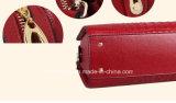 Signora di cuoio variopinta di vendita calda Handbag dell'unità di elaborazione di modo