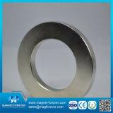 Magnete di anello di NdFeB del neodimio della terra rara