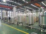 Sistema de tratamiento de agua del sistema de agua purificada