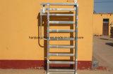 Cerca galvanizada resistente del panel del ganado del panel de la yarda del ganado del equipo del ganado de la INMERSIÓN caliente/del panel del ganado