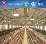 Cage de batterie de volaille de rangée de la rangée 4 des matériaux 3 de ferme
