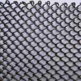 カーテン・ウォールのための装飾的な金網