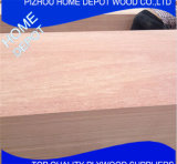 Faisceau en bois de Sapele Fancy Factory-Natural en 4.6mm 12mm 15mm