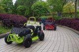 In het groot 80cc MiniGo-kart Met fouten