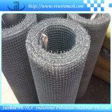 Maglia unita del quadrato della rete metallica con l'alta qualità
