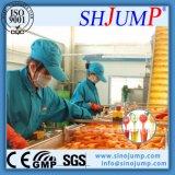 Linha de processamento de suco de laranja pressionado a frio de alta tecnologia