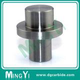 Fora do carboneto de tungsténio de alta qualidade Piercing Punch