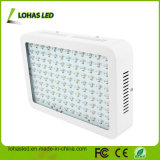 Plants Big Power 300W-2000W Planta de LED Dual Chip Grow Light for Bloom Vegetable Greenhouse