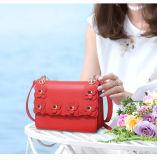 Handbag Fashion Nice Design花の女性標準的で小さい袋(WDL0127)