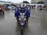 AAA 옥외 /Trike/Three 바퀴 기관자전차