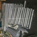 Sanitaire Roestvrij staal Vastgeklemde Pijp