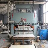 Chaîne de production chaude de contre-plaqué de presse du jour 16 machine chaude de presse de peau de porte
