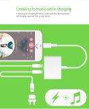 Écouteur de foudre pour le contact d'iPod d'iPad d'iPhone