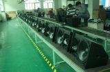 PROhilfsmittel-fehlerfreies Geräten-Systems-Audiovertrags-bidirektionaler 15 Zoll DJ-Lautsprecher