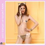 Nuevo diseño de impresión de tres puntos leopardo del estilo de señora Sexy Lingerie