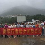 Velas baratas relativas à promoção chinesas da decoração
