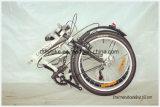Südamerika-heißer Verkaufs-faltendes Fahrrad, faltendes Stahlfahrrad,