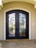 Роскошные двери входа утюга конструкции с круглой верхней частью
