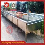 Máquina de lavagem da limpeza do repolho vegetal do controle de Digitas