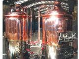 Equipamento de carbonatação do sistema do Saccharification e da filtragem