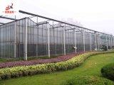 El cultivo de hortalizas de invernadero de cristal inteligente