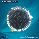 15-100 W Ledsmaster empotrable LED Down luz