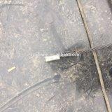 Alberino che sottopone il sistema a tensione guasto dell'ancoraggio in struttura in cemento armato rilevata in anticipo
