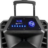 Batería recargable de 12 pulgadas el altavoz con micrófonos inalámbricos Bluetooth USB