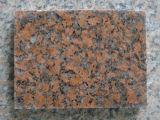 الصين [غ562] شجر قيقب أحمر داخليّ جدار قرميد صوان طبيعة حجارة