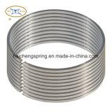 A schiocco/anelli di conservazione con acciaio inossidabile 304/316