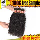 熱い販売法の卸売9AブラジルのRemyの毛