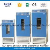 Incubadora termostática térmica elétrica do laboratório de Digitas da elevada precisão