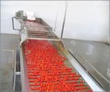 Sauce tomate effectuant la machine