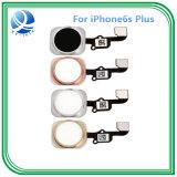 Первоначально домашняя кнопка с кабелем гибкого трубопровода для iPhone 6s плюс вспомогательное оборудование телефона