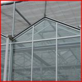 Сельское хозяйство Multi-Span коммерческого стекла выбросов парниковых газов для сада